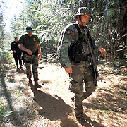 """The national forests in California and across the nation are increasingly being used to grow marijuana. The clandestine grows are shielded by tree canopies and are often close to, if not actually inside, recreational usage areas so that the growers can appear to be normal recreational users. A task force comprised of Sheriff deputies, US Forest Service Agents and Dept. of Justice agents raided a grow in the Tahoe National Forest that yielded 5000 plants in the 2""""-12"""" range and arrested one Mexican national who was tending the grow. Here, the task force hikes back into the grow area to begin the eradication of the grow."""