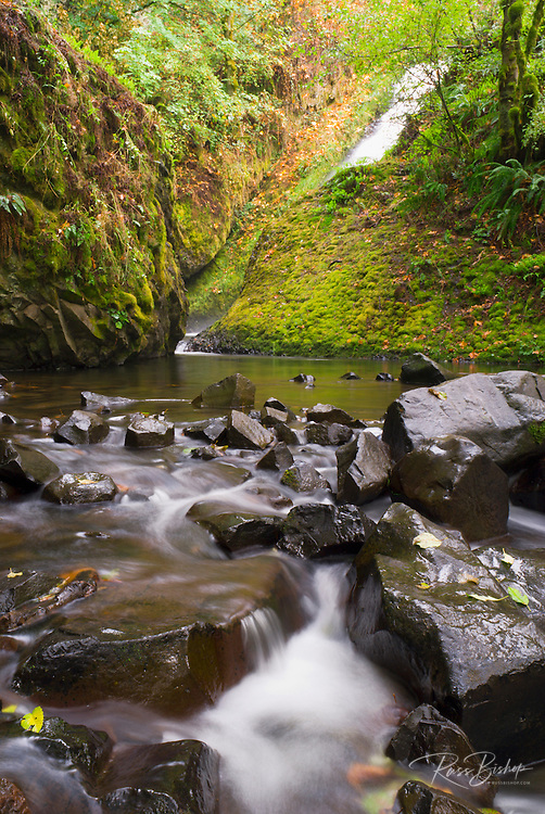 Bridalveil Falls and creek, Columbia River Gorge National Scenic Area, Oregon