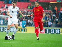 Football — 2016 / 2017 Premier League - Swansea vs Liverpool<br /> <br /> Angel Rangel of Swansea City attacks chased by  Roberto Firmino  of Liverpool  at the Liberty Stadium.<br /> <br /> pic colorsport/winston bynorth