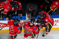 PENTICTON, CANADA - SEPTEMBER 8: Calgary Flames bench on September 8, 2017 at the South Okanagan Event Centre in Penticton, British Columbia, Canada.  (Photo by Marissa Baecker/Shoot the Breeze)  *** Local Caption ***