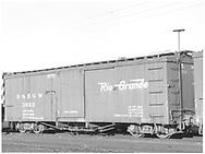 Box car #3693 at Alamosa, CO. yard.<br /> D&RGW  Alamosa, CO  Taken by Richardson, Robert W. - 9/9/1946