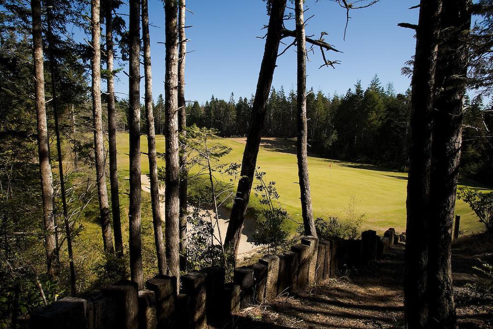 #13 green Bandon Trails, Bandon Dunes Golf Resort, Bandon Oregon
