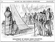 The old evolutionary argument over Nature or Nurture. It would be a brave person who came to a conclusion on this evidence. George du Maurier cartoon from 'Punch', London, 16 July 1887