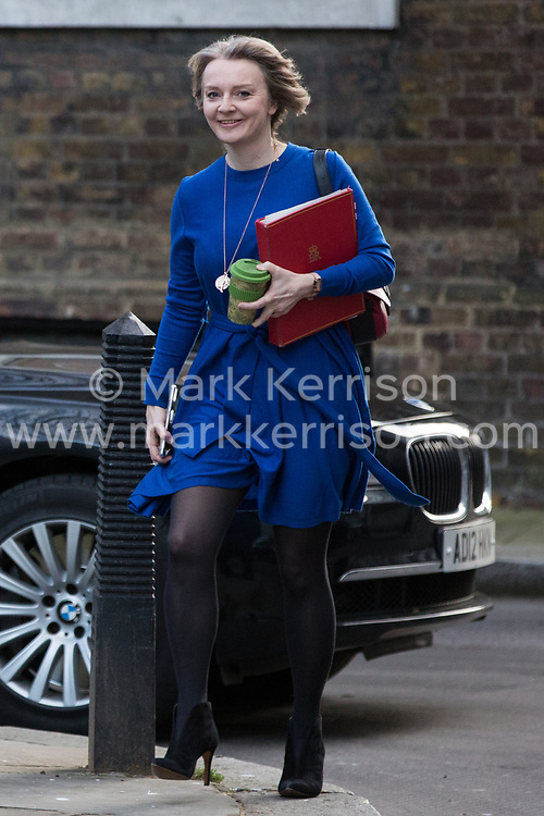 London, UK. 8th January, 2019. Liz Truss MP, Chief Secretary to the Treasury, arrives at 10 Downing Street for the first Cabinet meeting since the Christmas recess.