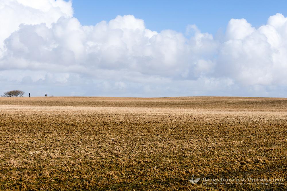 Norway, Rogaland, Hå. Open fields.