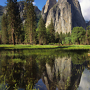 Reflection in a flooded in Yosemite Valley, Yosemote National park, CA.