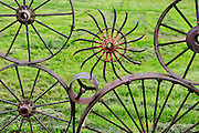 Wagon wheel fence at the Dahmen Barn, Uniontown, Washington, Palouse Country.  The fence is made from over 1,000 antique wagon and tractor wheels. The Dahmen barn was built in 1935 is now home to artists' space.