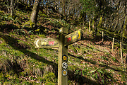 Wooden sign along circular walking route on Carreg Cennen Castle on 18th February 2019 in Trapp, Powys, Wales, United Kingdom.