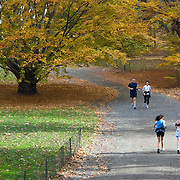 Autumn run in Central Park, New York City