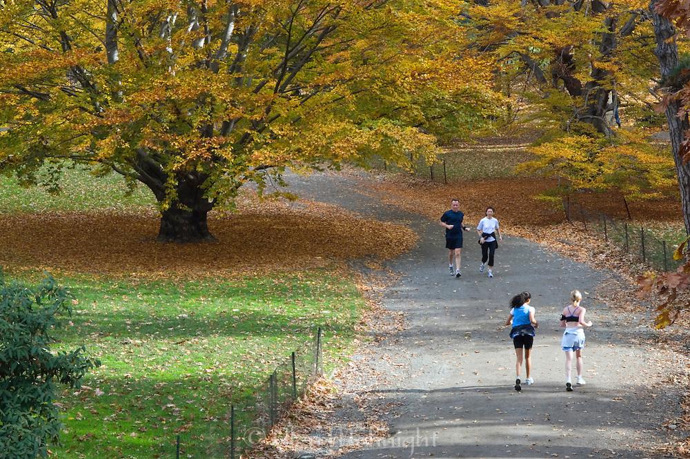 Autumn run in Central Park, New York City