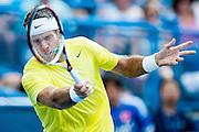 Argentina's Juan Martin Del Potro hits a return to USA's John Isner during their men's final singles match at the Citi Open ATP tennis tournament in Washington, DC, USA, 4 Aug 2013. Del Potro won the final 3-6, 6-1, 6-2.