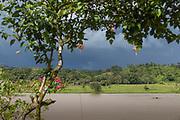 Landscape with view of a rainforest across the San Juan River, El Castillo, Rio San Juan Department, Nicaragua