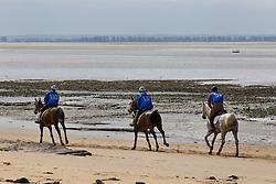 Tarek Tahner, (KSA), Easy Fontnoire, Hassan Tahous S.J. Al Nuaimi, Leonardo, Abdulrahman Saad A.S. Al Sulaiteen, Koheilan Kincso<br /> Alltech FEI World Equestrian Games™ 2014 - Normandy, France.<br /> © Hippo Foto Team - Leanjo de Koster<br /> 25/06/14
