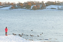 ©London News Pictures. 27/11/2010. A local resident is seen feeding ducks and swans on Rutland Water this Saturday. Temperatures are expected to stay low throughout the weekend, and further snow is expected for many parts of the UK.  Photo credit should read Tim Goode/London News Pictures