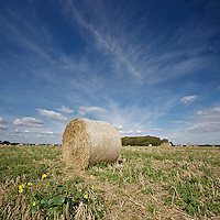 Hay bales on the farm, isle of wight