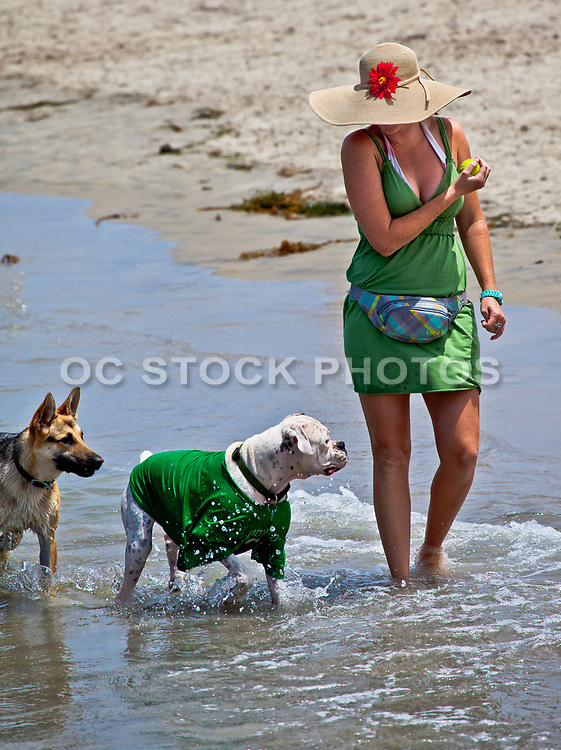 Woman Playing With Her Dogs at the Beach