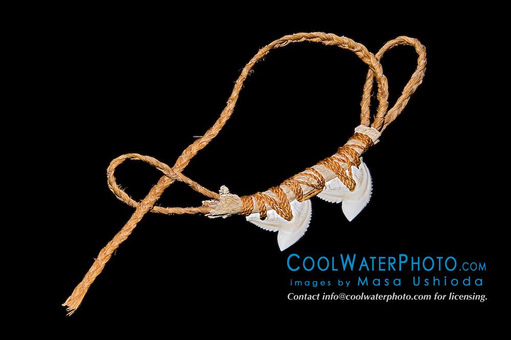 historic Hawaiian shark teeth weapon - sennet  hand weapon with tiger shark teeth, Galeocerdo cuvier, Hawaii