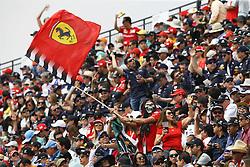 October 29, 2017 - Mexico-City, Mexico - Motorsports: FIA Formula One World Championship 2017, Grand Prix of Mexico, .fans  (Credit Image: © Hoch Zwei via ZUMA Wire)