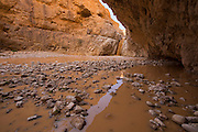 Israel, Tze'elim Stream (Nahal Tze'elim) is a wadi and canyon situated in the Judean Desert, near Masada, descending to the Dead Sea. Ein Namer, (leopard headspring)