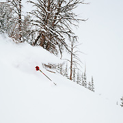 Andrew Whiteford skis a powder line in the Teton backcountry near Jackson Hole Mountain Resort, Teton Village, Wyoming .