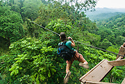 LAOS, Bokeo Nature Reserve, tropical rainforest, Gibbon Experience: ecotourism and conservation project, Kelly launching from tree house, on zip line cable while wearing harness and safety equipment attached to pulley system