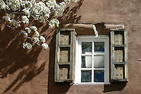 Shutters on an adobe wall, with spring flowering tree, Santa Fe New Mexico