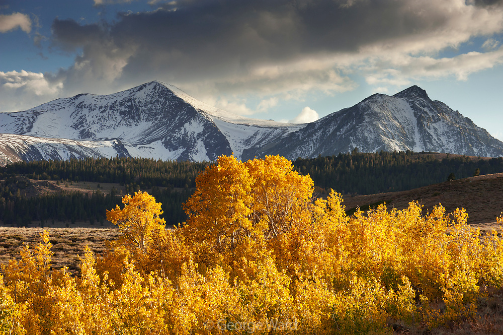 Mount Warren and Gilcrest Peak with Aspens and Clouds, Inyo National Forest, California