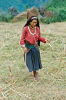Nepal, Vallée de l'Arun, femme Sherpa. // Nepal, Arun Valley, Sherpa woman.