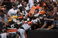 COPYRIGHT DAVID RICHARD.A fan in the end zone Dawg Pound at Cleveland Browns Stadium throws beer on Cincinnati receiver Chad Johnson after Johnson jumped into the seats after scoring a touchdown in the third quarter..The Cleveland Browns defeated visiting Cincinnati 51-45, Sunday, September 16, 2007..