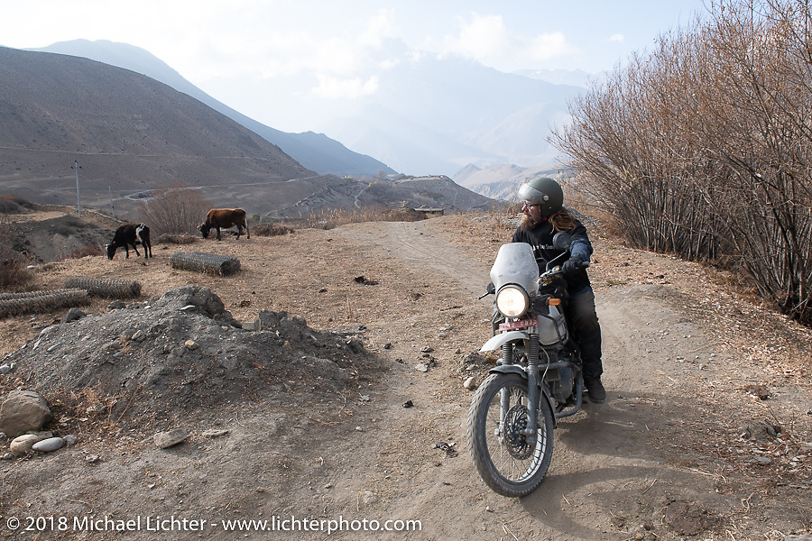 Bear Haughton heads up to 12,000' at the end of day-5  of our Himalayan Heroes adventure riding from Kalopani through the Mustang District to Muktinath, Nepal. Saturday, November 10, 2018. Photography ©2018 Michael Lichter.