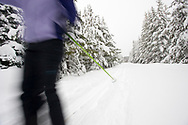 One young woman cross country skis on a trail in the snow in Bend, Oregon. (releasecode: jk_mr1032) (Model Released)