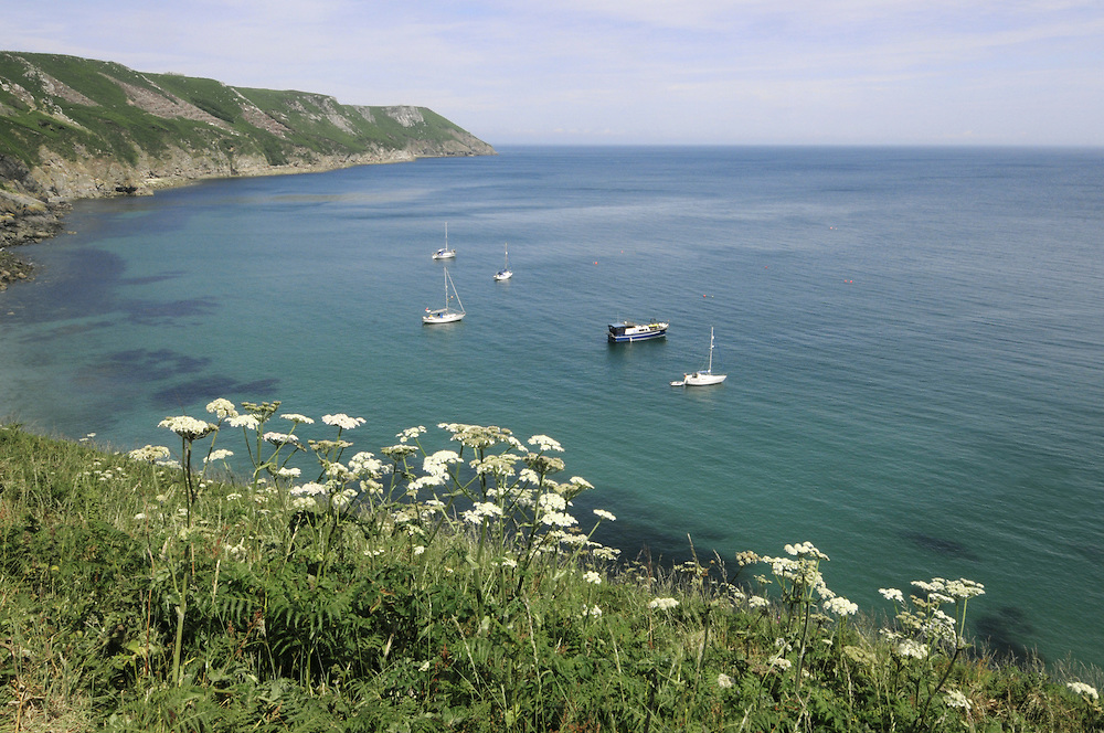 Landing bay and east side, Lundy, Devon