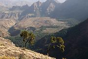Simien Mountains National Park, Ethiopia, 3260m 10,700ft high, escarpment edge near Buyit Ras