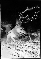 UP 200 Sled Dog Race, Midnight Run, 1993, downtown Marquette, Michigan