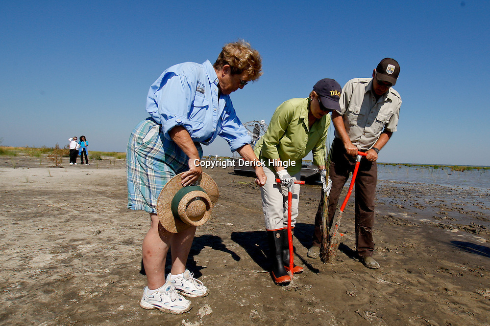 Bonnie with Marsh Rider Magazine watches Dr. Jane Lubchenco, Administrator for the National Oceanic and Atmospheric Administration (NOAA) and Ken Litzenberger with US Fish & Wildlife as they replant marsh grass and plants in the Big Branch National Wildlife Refuge in St. Tammany Parish near Lacombe, La.