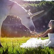 Summer Unicorns