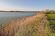 Reedgrass, Mecox Bay, Summer Home of Cliff Robertson,  36 Morrison Lane, Water Mill, Long Island, New York