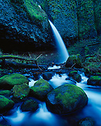 Horsetail Creek cascading over Ponytail Falls, Columbia River Gorge National Scenic Area, Mount Hood National Forest, Oregon.
