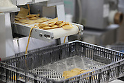 Ravioli production line