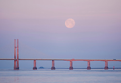 """© Licensed to London News Pictures; 27/05/2021; Chepstow, Monmouthshire, Wales, UK. A full Moon is seen setting over the Prince of Wales Bridge, previously called the Second Severn Crossing. The full Moon in May is known as the """"Flower Moon"""" and this full Moon is also a supermoon, the largest full Moon of 2021. Being only 357,462km away from Earth, the Moon will appear 30 per cent brighter and 14 per cent larger than some previous full Moons. Photo credit: Simon Chapman/LNP."""
