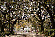 Fountain in historic Forsyth Park in Savannah, Georgia, USA.