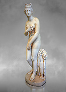 2nd century AD Roman marble sculpture of Aphrodite (Venus), 'Dresden Capitoline Type, copied from a Hellanistic Greek original,  inv 6238, Museum of Archaeology, Italy ..<br /> <br /> If you prefer to buy from our ALAMY STOCK LIBRARY page at https://www.alamy.com/portfolio/paul-williams-funkystock/greco-roman-sculptures.html . Type -    Naples    - into LOWER SEARCH WITHIN GALLERY box - Refine search by adding a subject, place, background colour, etc.<br /> <br /> Visit our ROMAN WORLD PHOTO COLLECTIONS for more photos to download or buy as wall art prints https://funkystock.photoshelter.com/gallery-collection/The-Romans-Art-Artefacts-Antiquities-Historic-Sites-Pictures-Images/C0000r2uLJJo9_s0