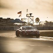 Porsche Carrera Cup Sebring 2021