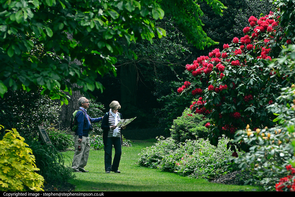 © Licensed to London News Pictures. 07/06/2013. Wisley, UK A man and a women read a map of the gardens. People enjoy the warm weather at RHS Wisley in Surrey today 7th June 2013. Photo credit : Stephen Simpson/LNP