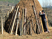 A young Bhutanese woman sunbathing next to a pine needle stack in the Haa valley, Western Bhutan. Pine needles are collected from the forests and used as animal bedding by farmers in remote areas. Despite rapid urbanisation, the majority of people, 66% of all households, still live in rural Bhutan, most dependent on the cultivation of crops and livestock breeding.