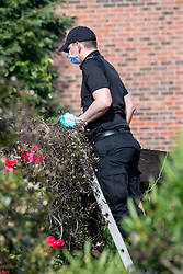 © Licensed to London News Pictures. 21/05/2020. Beaconsfield, UK. A specialist search team member uses a ladder to look for evidence on a garage roof at a property on North Drive. Thames Valley Police were called to North Drive, Beaconsfield at around 00:01 BST on Thursday 21/05/2020 to a report of a stabbing. A man in his forties had sustained injuries consistent with stab wounds and was taken to hospital. Photo credit: Peter Manning/LNP