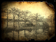 iPhone- Landscapes