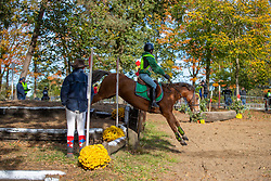 Bouts Jef, BEL, Spirit<br /> LRV Ponie cross - Zoersel 2018<br /> © Hippo Foto - Dirk Caremans<br /> 28/10/2018