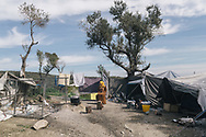 A female asylum seeker cooking on an open fire in the makeshift settlement next to the official Moria refugee camp site. Scattered amongst the olive groves, around 1500 people live in tents and shelters in this unofficial site.