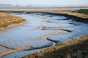 Meanders in muddy channel River Deben low tide, near Falkenham, Suffolk, England, UK